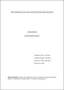 Frankenstein  Case Studies in Contemporary Criticism   Mary